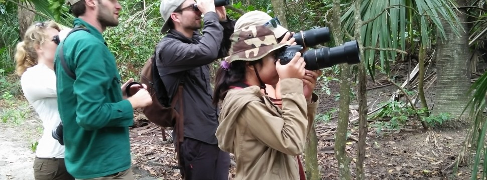 Birding and Photo tour